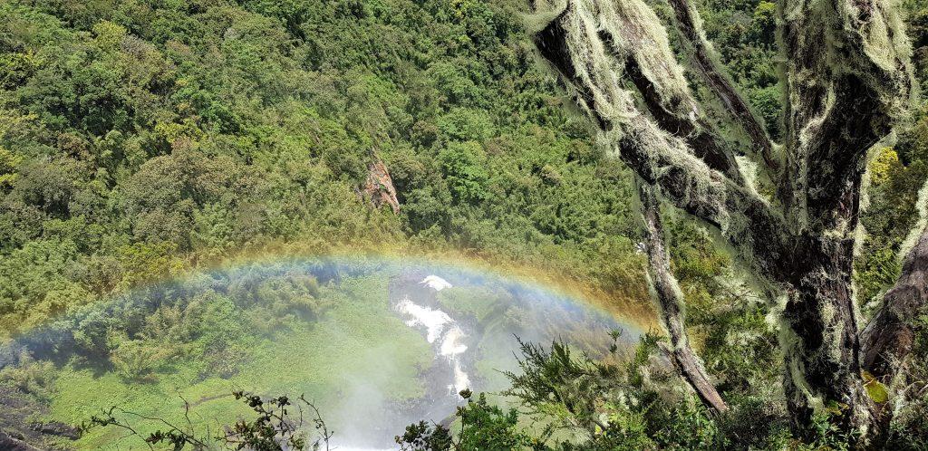 Enviro WIld- Karuru falls