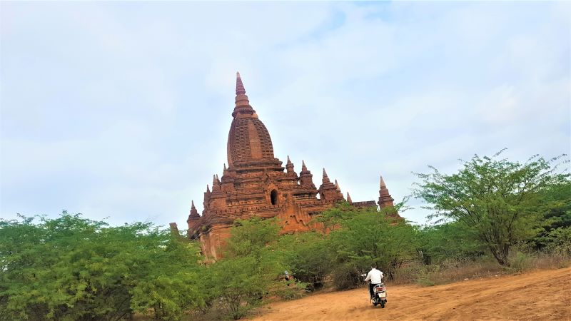 Temple surrounded by acacia tress