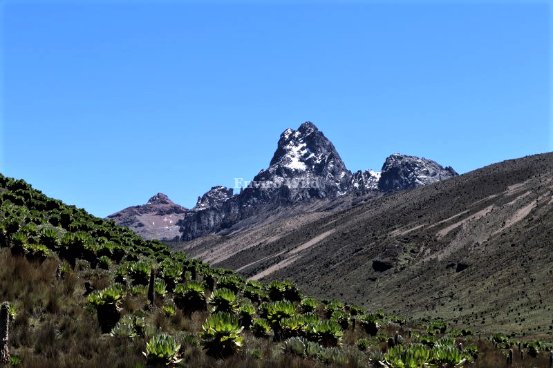 Disappearing Snow- Batian and Nelion Peaks Mt. Kenya