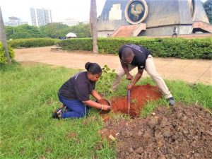 Winnie- Planting tree at Uhuru Park