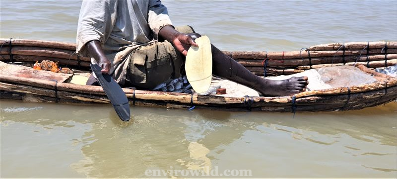 Fisherman using plastic oars