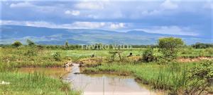 Lake Kamnarok /Enviro Wild