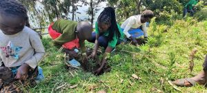 helping children learning to plant trees