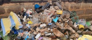 Single-use plastics collected within the Conservancy