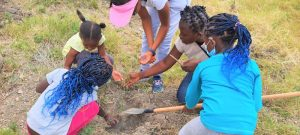 Our member helping children understand more about trees