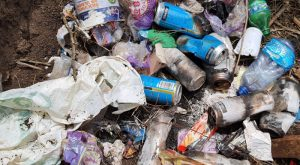 Single-use items trashed within the conservancy